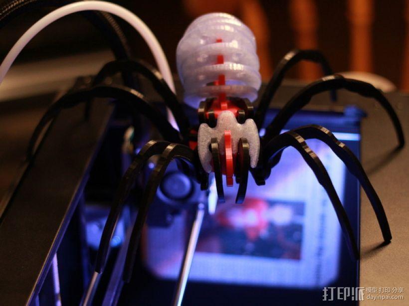 蜘蛛 3D模型  图5