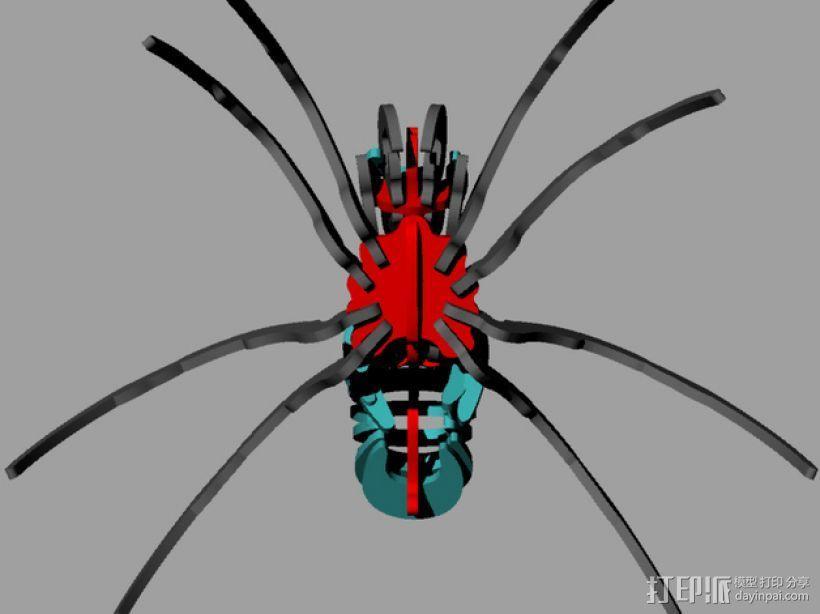 蜘蛛 3D模型  图9