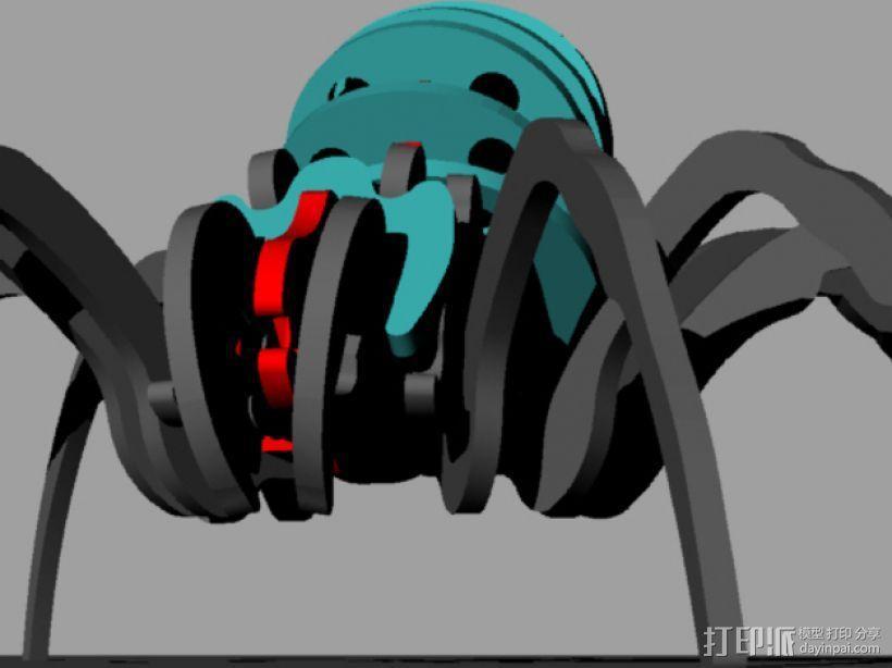 蜘蛛 3D模型  图10