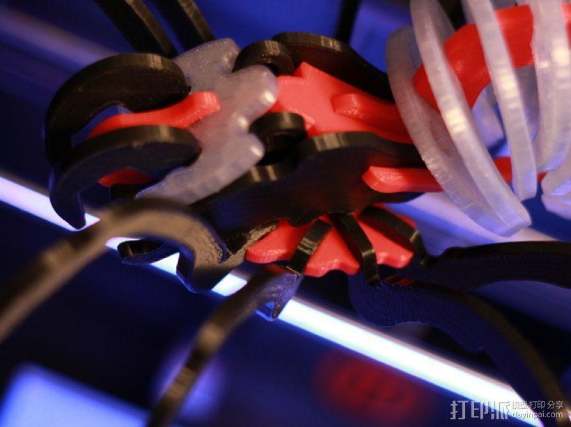 蜘蛛 3D模型  图11