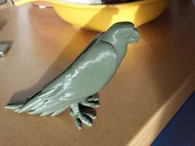鹦鹉 3D模型