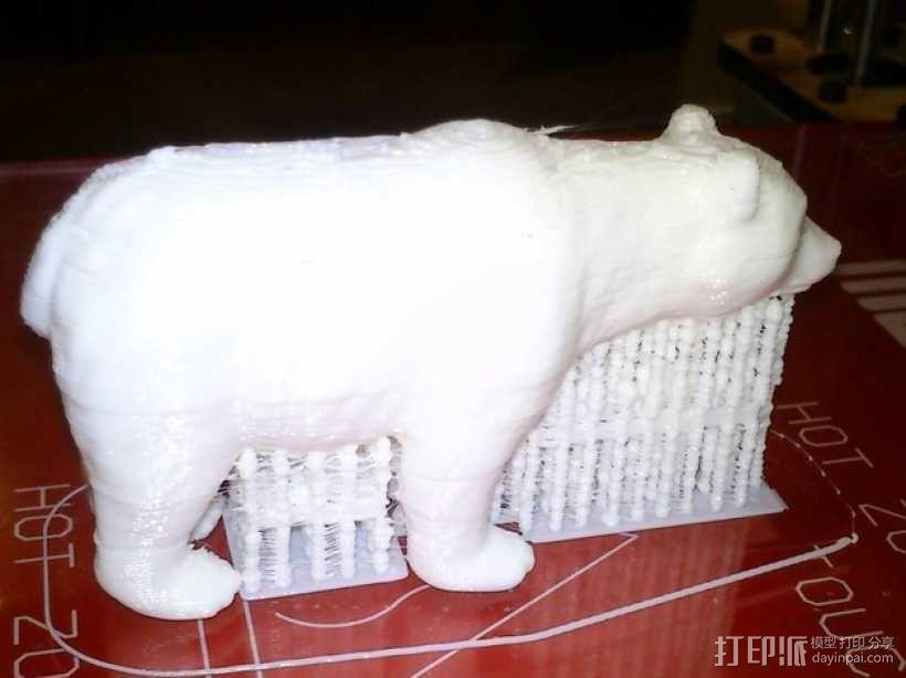 狗熊 3D模型  图2