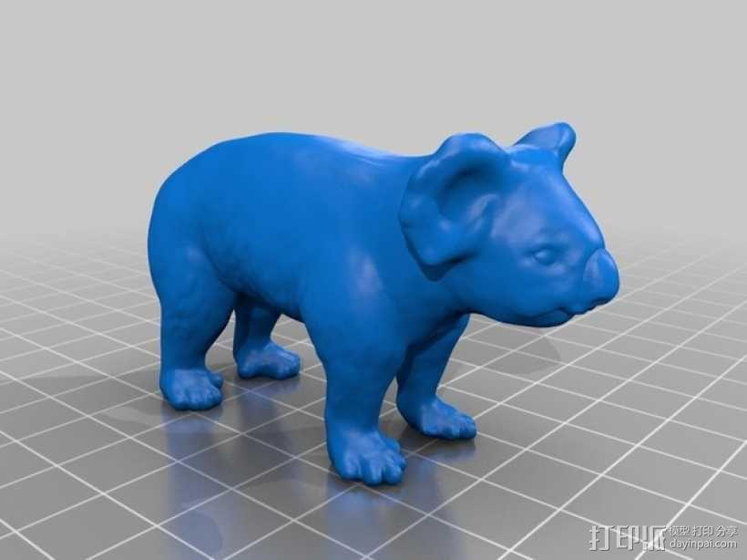 考拉 3D模型  图1