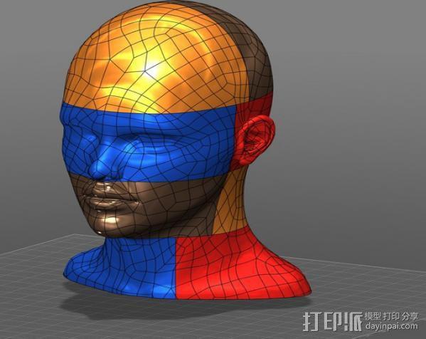 人头模型 3D模型  图2