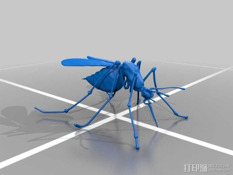 蚊子 3D模型  图2