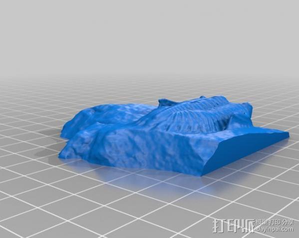 三叶虫 3D模型  图5