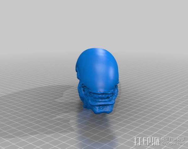 外星人头部模型 3D模型  图2