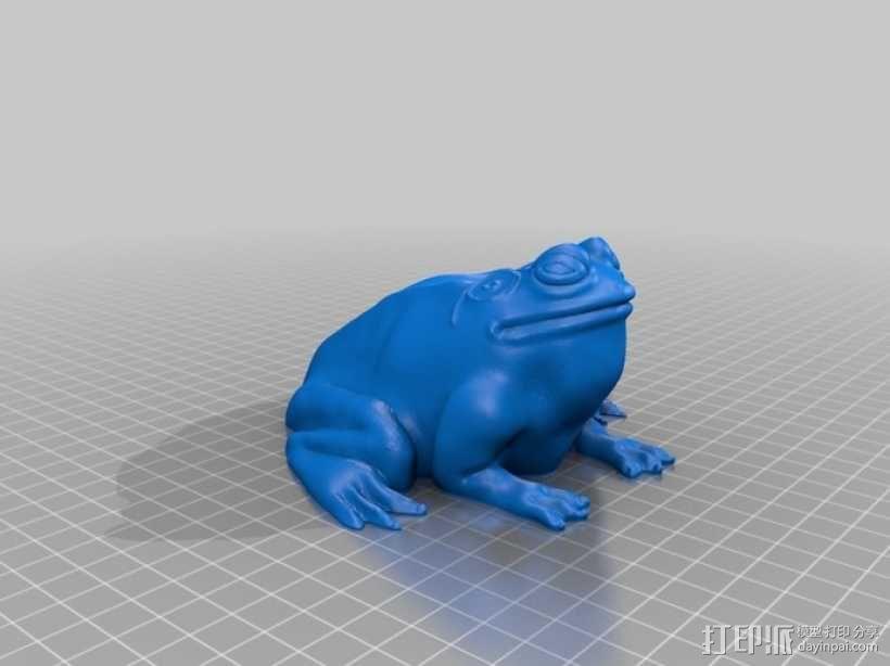 牛蛙 3D模型  图2