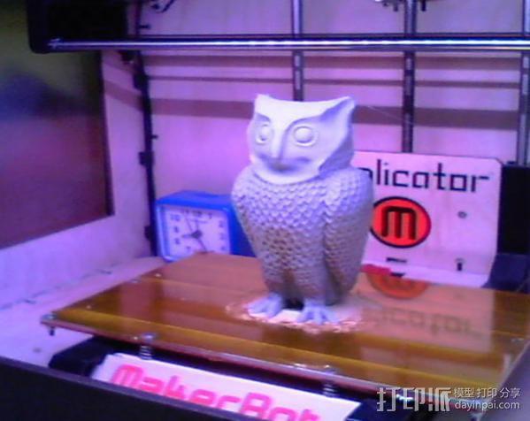 猫头鹰 3D模型  图3