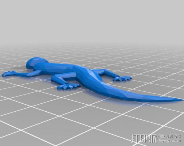 壁虎 蜥蜴 3D模型  图2