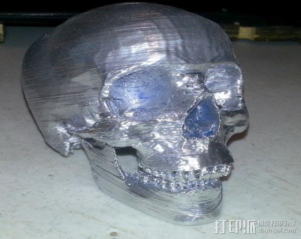 人头头骨 3D模型  图4
