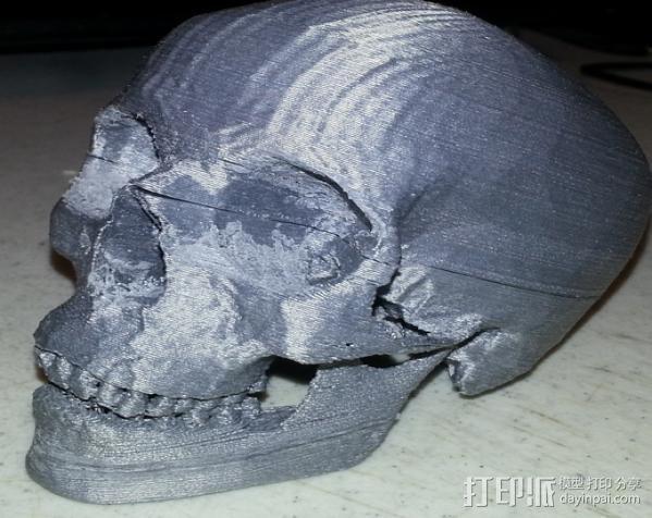 人头头骨 3D模型  图9