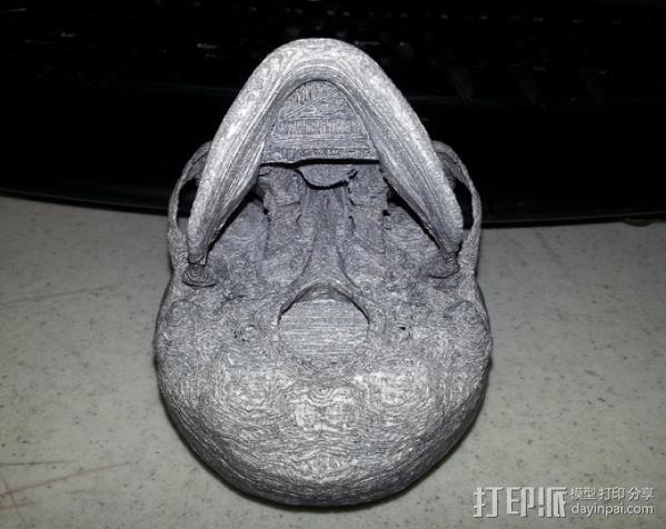 人头头骨 3D模型  图11