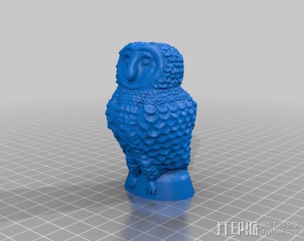 仓鸮 3D模型  图4