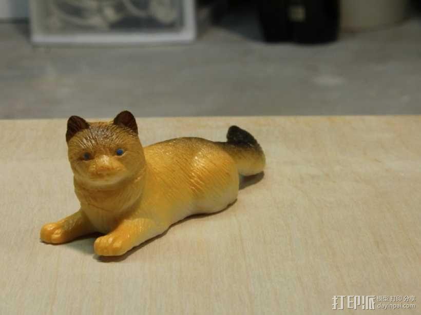黄色的猫咪 3D模型  图2