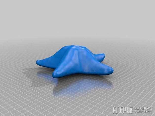 海星 3D模型  图1