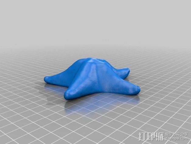 海星 3D模型  图2