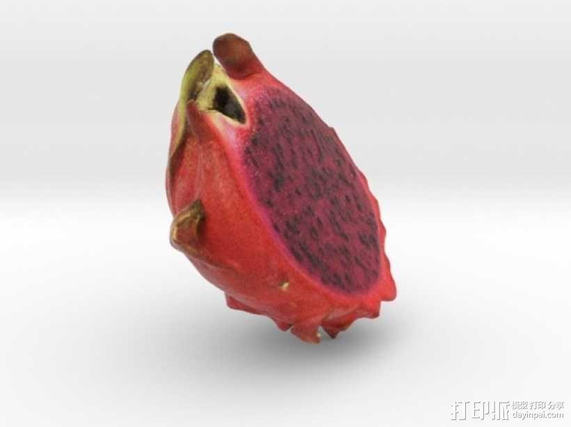 火龙果 3D模型  图4
