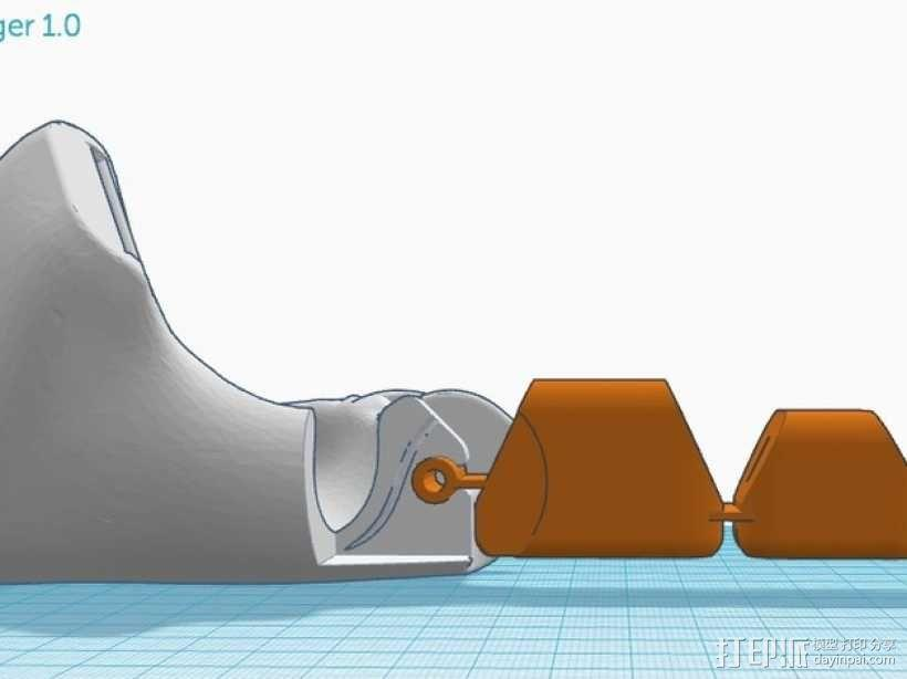 手指 3D模型  图4