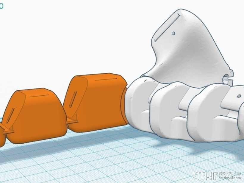 手指 3D模型  图3