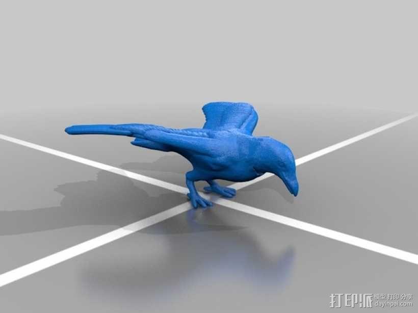 Diaval乌鸦 3D模型  图2