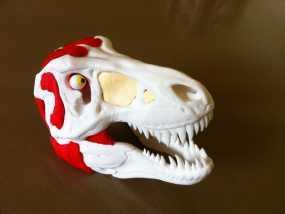 霸王龙头部肌肉组织 3D模型