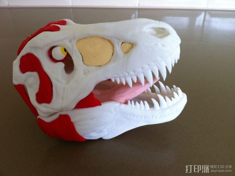 霸王龙头部肌肉组织 3D模型  图3