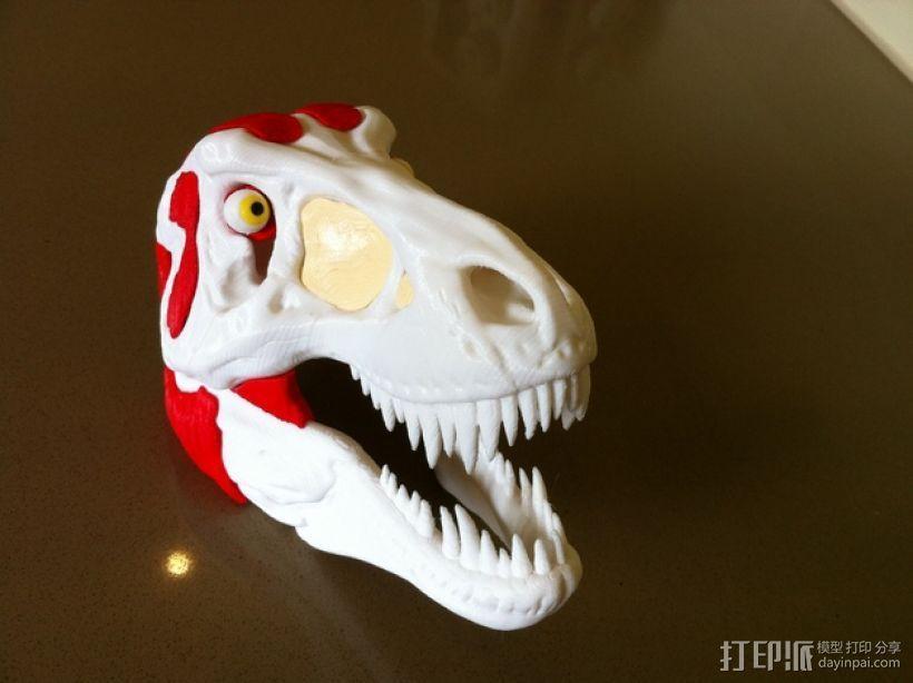 霸王龙头部肌肉组织 3D模型  图8