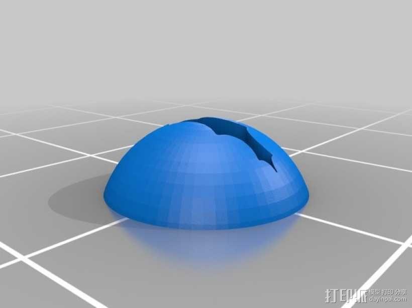 霸王龙头部肌肉组织 3D模型  图10