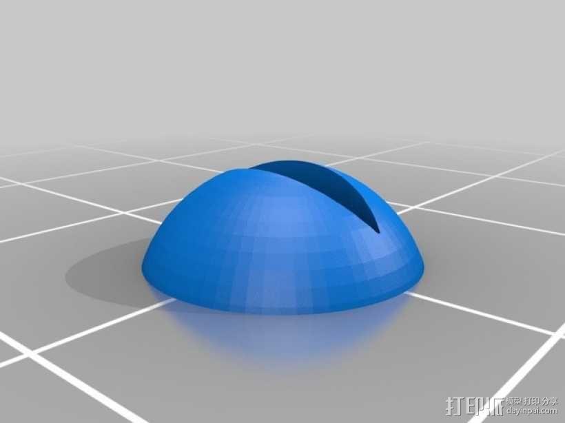 霸王龙头部肌肉组织 3D模型  图14