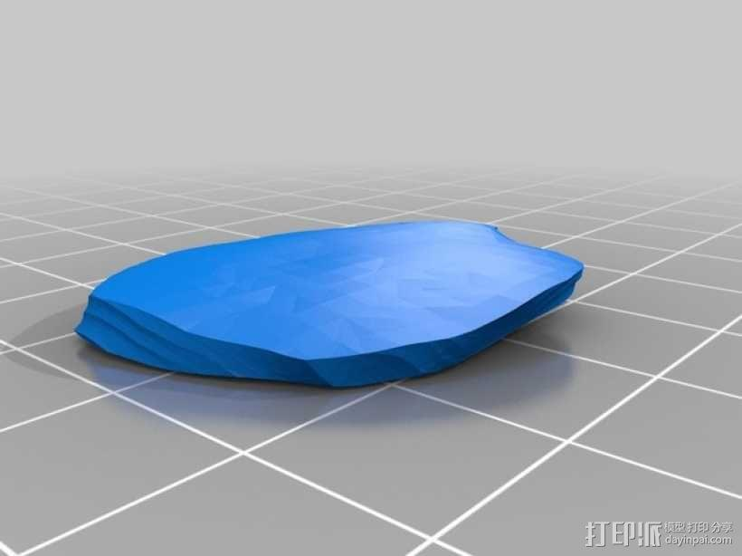霸王龙头部肌肉组织 3D模型  图21