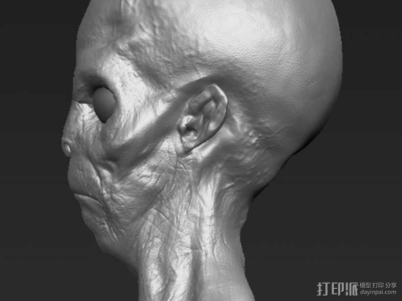 外星人头部模型 3D模型  图3