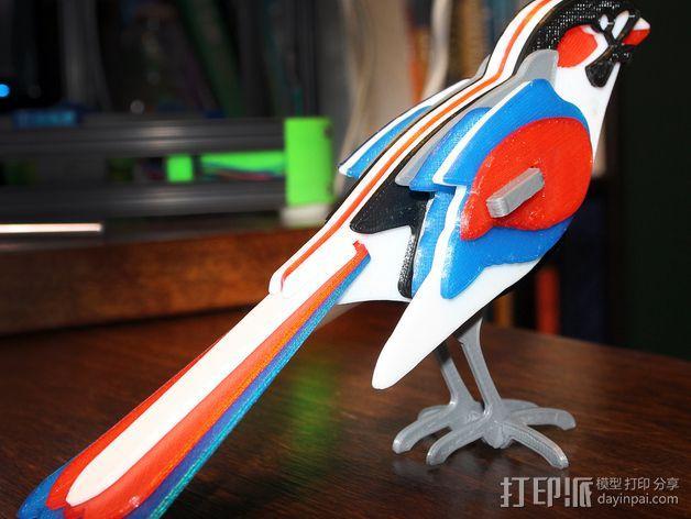 七彩鸟 3D模型  图2