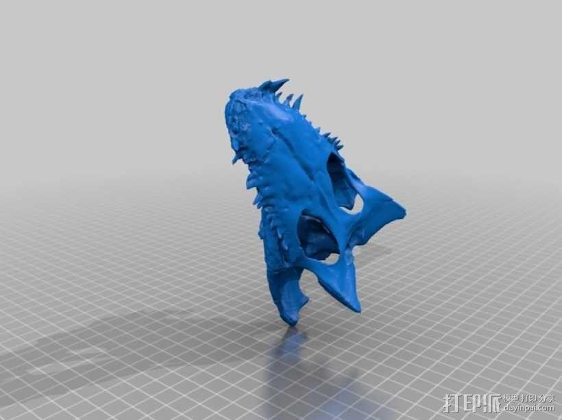 凯门鳄鱼头骨 3D模型  图3