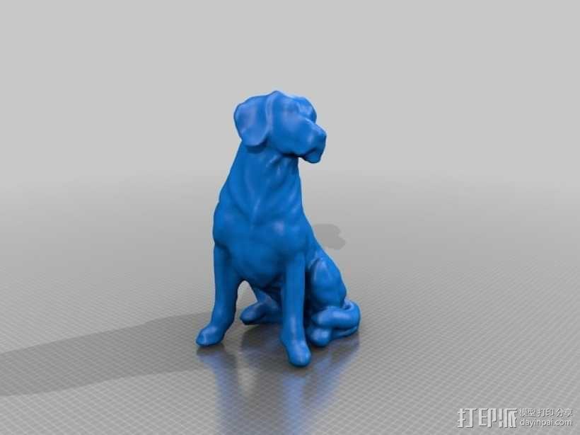 小黄狗 3D模型  图1
