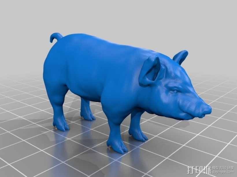猪 3D模型  图1