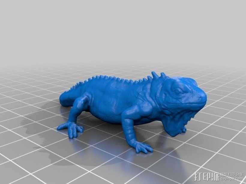 鬣蜥蜴 3D模型  图1