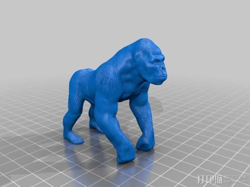 大猩猩 3D模型  图1