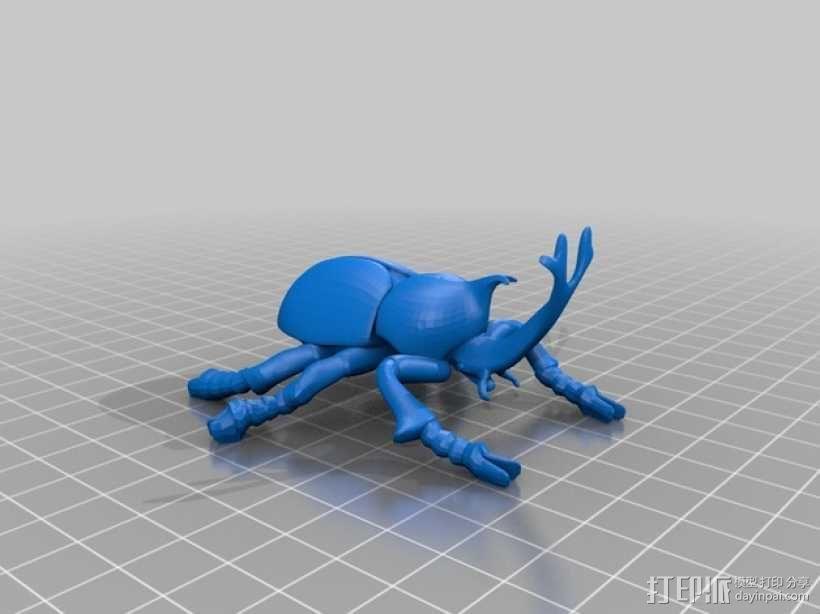 甲虫 3D模型  图1