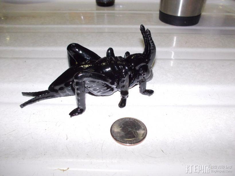 蟋蟀 3D模型  图2