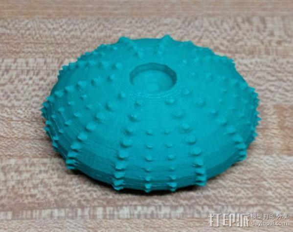 海胆 3D模型  图1