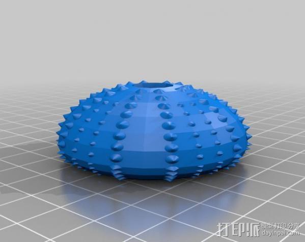 海胆 3D模型  图2