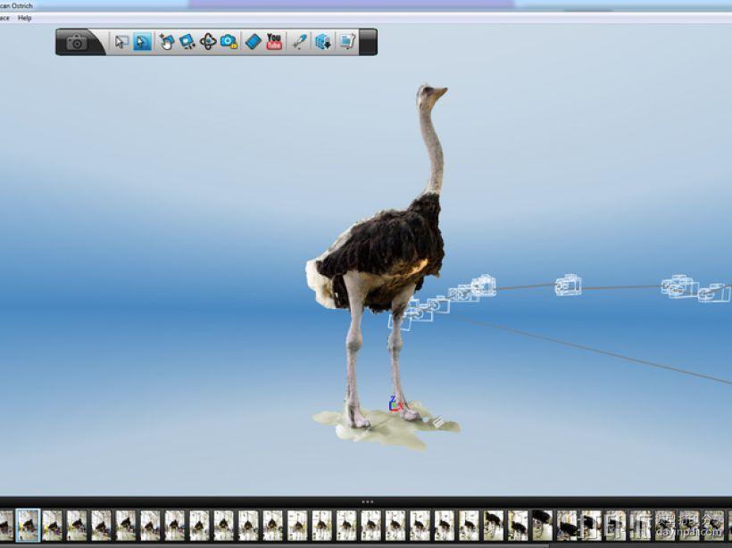 非洲鸵鸟 3D模型  图1