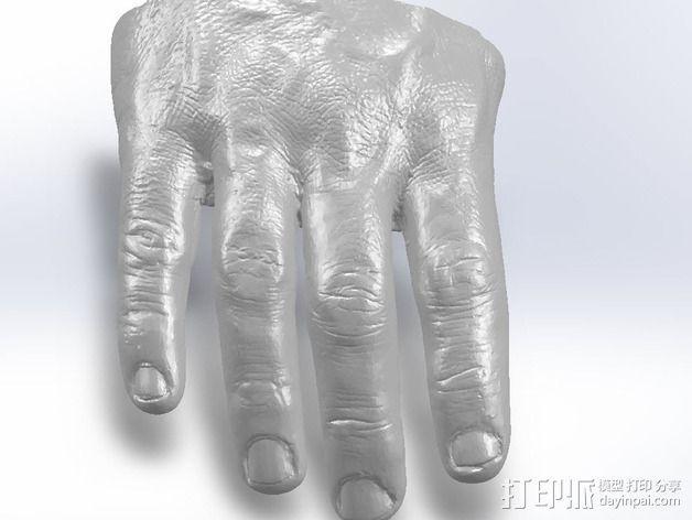 手 手指 3D模型  图2
