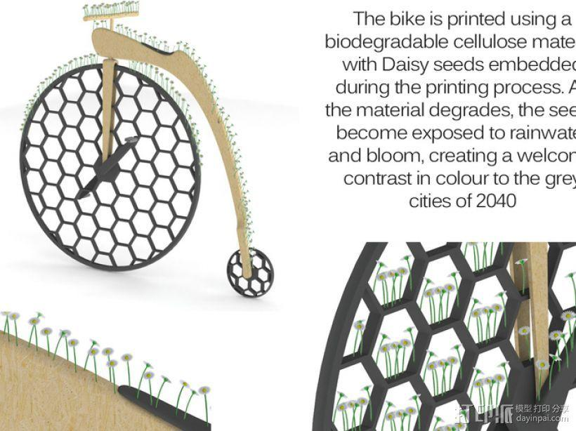 Penny Silva 自行车 3D模型  图7