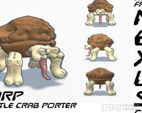 地幔蟹Porter 3D模型  图8