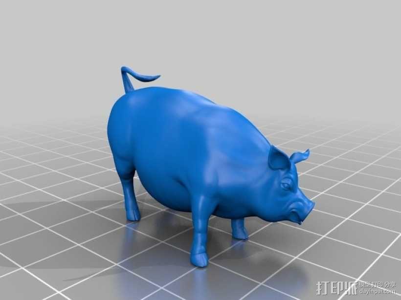 家猪 3D模型  图1