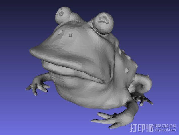 蟾蜍术士 3D模型  图1