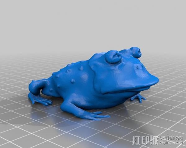 蟾蜍术士 3D模型  图2