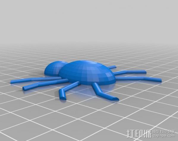 蜘蛛  3D模型  图2